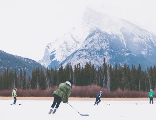 Understanding The Language of Hockey
