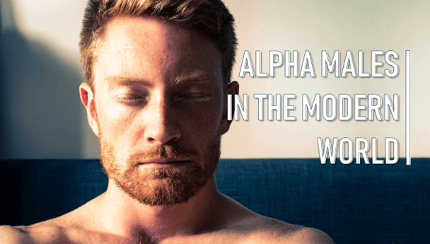 How to write like an alpha male research thesis titles